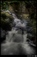 Water of Leith 14 by shadowfoxcreative