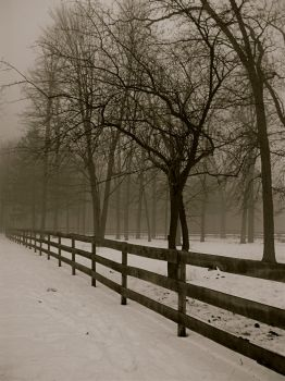 On the Fence by Skymaker7