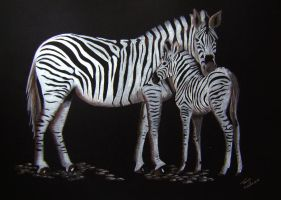 Zebra and Foal by Elentarri