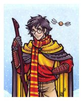 The Gryffindor Seeker by BlueUndine
