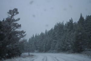 Snowy Weather by Cora-Leigh
