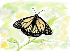 Monarch Butterfly Mother's Day Card by cleody