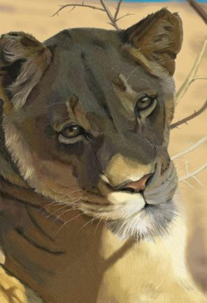 http://th08.deviantart.net/fs9/300W/i/2006/147/a/b/Lioness_by_YoungFang.jpg