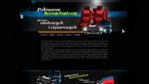 Car covers by eeb-pl