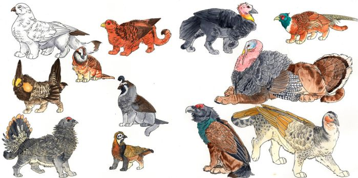 Gryphon Paintings V: Wild Fowl by SargassosArt