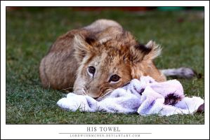 Akimba: His towel by AF--Photography