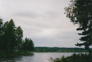 Somewhere in Sweden by Photopathica