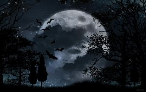 Black and white moonlight background by lolotte10