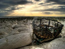Lobster Pot by wreck-photography