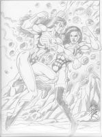 Catfight between She-Hulk and WW, by  Robb Phipps by zefly88