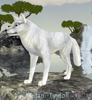 My Wolf Form (for my adventure novel) by mtindoll