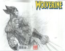 wolvie sketch cover by orphanshadow