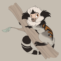 Marmoset Commission by MBPanther