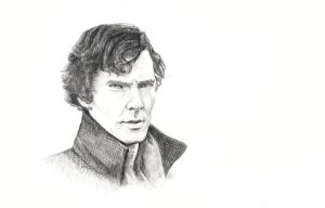 Sherlock by Ameli-Lawless