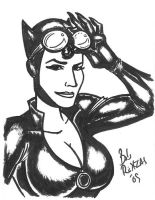 Catwoman Card by AnimalQwacker