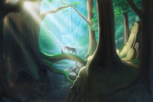 Forest foraging ground by hibbary