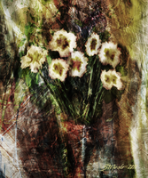 Vase with white flowers by raysheaf