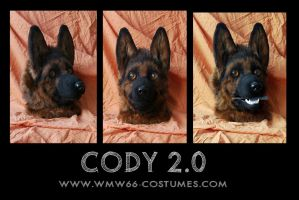 Cody ver. 2.0 by WMW66-costumes