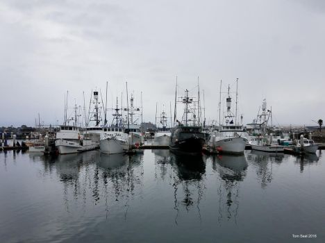 Boats in San Diego by Transportphotos