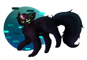 {Warrior Cats}Hollyleaf by HalfLight-Dimondcady