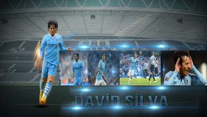 Silva Wallpaper by ANILDD11