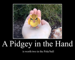 A Pidgey in the Hand by Wakerra