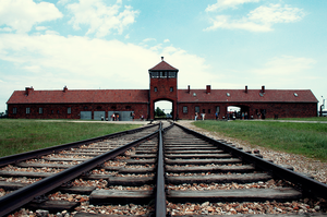 Birkenau by bluetogray