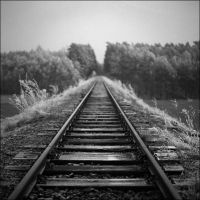 Vanishing Tracks by vvolfmann