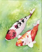 Koi fish by m4g1c4lm3