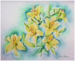 Yellow Lilies by Acacia13