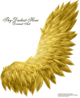 Fluffed Wing 02 - Golden by Thy-Darkest-Hour