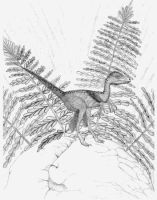 Archaeornithoides by briankroesch