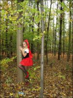 Red Riding Wood by TheBizarreBirdcage by zenx007