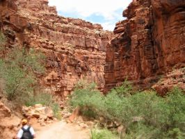 Canyon Walls by Evevilly