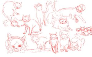 Cat sketch dump {again} by iamblossom