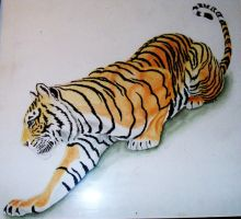 Old Tiger by Sofera