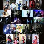 New year greeting! (Total cosplays of 2013) by Maho-Urei