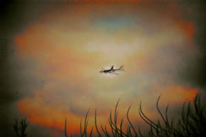 planes by speed-demon