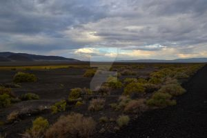 Nevada Plains by ChaosWolfPictures