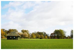 Bosworth Park by Android18a