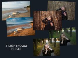 Free Lightroom Presets by transfactor