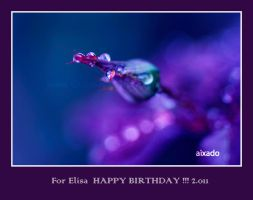 For Elisa 2.011 by aixadophoto
