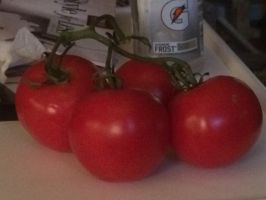 Tomatoes by VISIONARYGirl