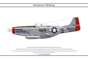 Mustang USAAF 354th FS 1 by WS-Clave