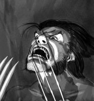Ultimate Wolverine 2 by Deviator77