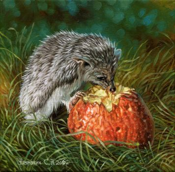 hedgehog and sweet Apple by Animal75Artist