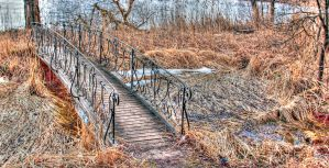 The strange bridge by luethy
