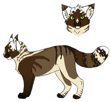 Cat Adoptable 1 -CLOSED- by SummerAdopts