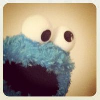 cookie monster by melivillosa