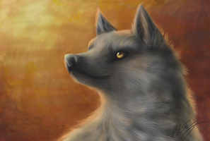 Heike's wolf by GriffenGirl